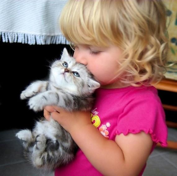 am ramas insarcinata ce fac cu pisica (1)