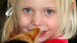 Copilul la 2 ani: comportament, evoluţie, nevoi