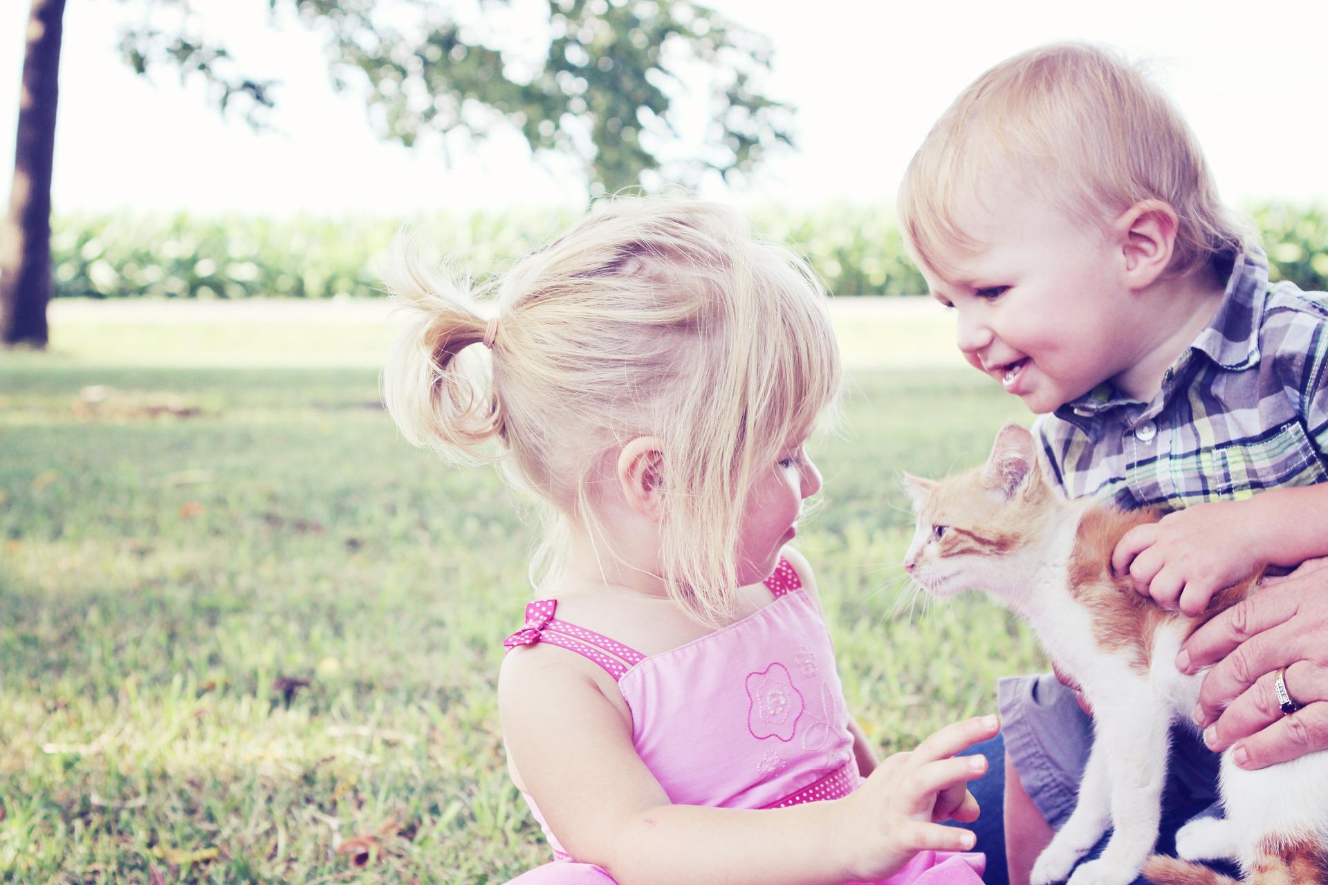 50 de lucruri pe care trebuie să le faci cu copilul vara aceasta (4)
