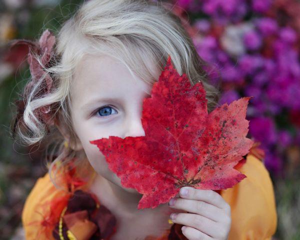 29 de activitati pe care trebuie sa le faci cu copilul toamna aceasta (5)